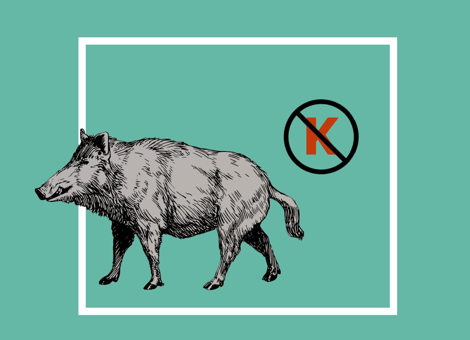 не ведите себя по-свински